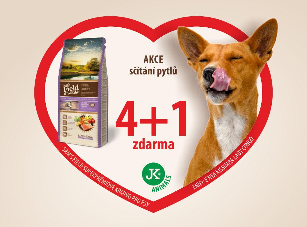 4-plus-1-scitani-pytlu
